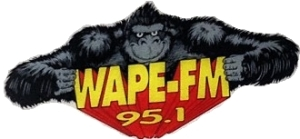 95.1 WAPE (old logo)